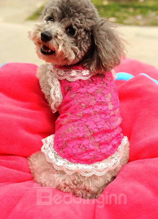 Beautiful Pink with White Lace Dog summer Clothing