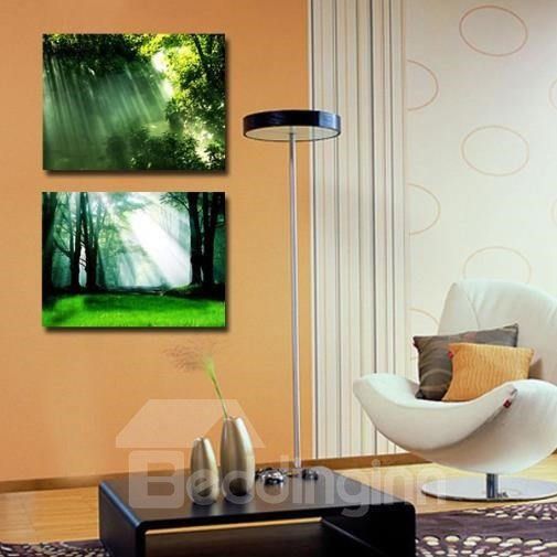 New Arrival Beautiful Sunshine in the Forest Print 2-piece Cross Film Wall Art Prints