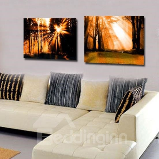 New Arrival Beautiful Afternoon Sunshine in the Forest Print 2-piece Cross Film Wall Art Prints