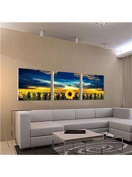 New Arrival Beautiful Sunflowers and Blue Sky Print 3-piece Cross Film Wall Art Prints