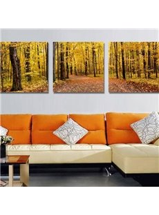 New Arrival Beautiful Yellow Forest Print 3-piece Cross Film Wall Art Prints