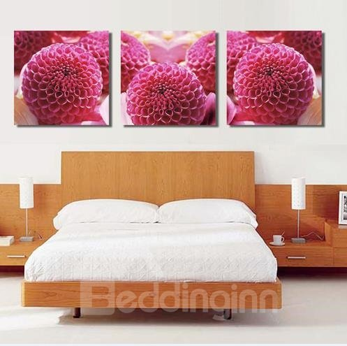 New Arrival Lovely Rose Red Floral Ball Print 3-piece Cross Film Wall Art Prints