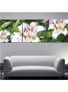 New Arrival Beautiful Lilies Print 3-piece Cross Film Wall Art Prints