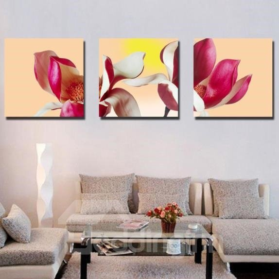New Arrival Lovely Red Petals and Stamen Print 3-piece Cross Film Wall Art Prints
