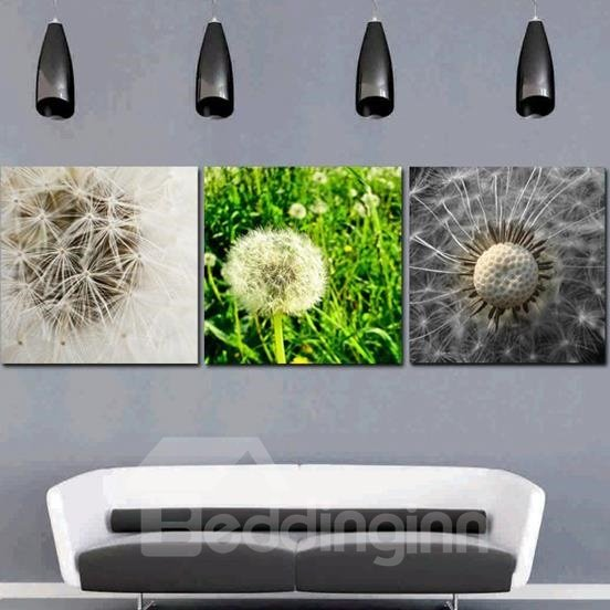 New Arrival Lovely Dandelions Print 3-piece Cross Film Wall Art Prints