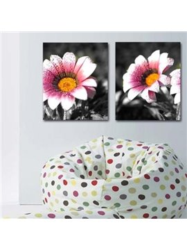 New Arrival Elegant Pink Daisy Flowers Print 2-piece Cross Film Wall Art Prints