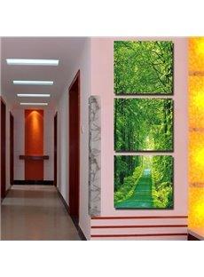 Beautiful Green Path in the Woods Print 3-piece Cross Film Wall Art Prints