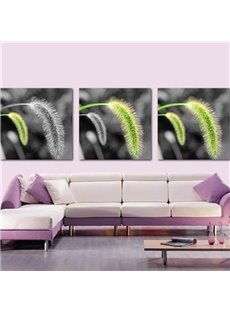 New Arrival Beautiful Green and Grey Dog's Tail Grass Print 3-piece Cross Film Wall Art Prints