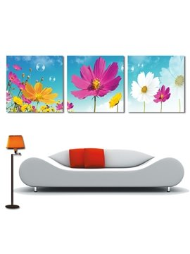 New Arrival White Yellow Peach Flowers Under Sunshine Film Wall Art Prints