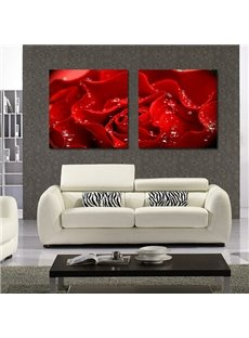 New Arrival Dew On Red Rose Film Art Wall Prints