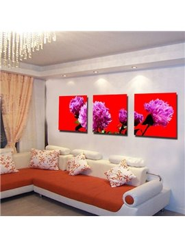 Delicate Beautiful Carnation Canvas 3-panel Framed Wall Art Prints