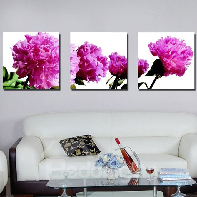 New Arrival Delicate Carnation Canvas Wall Prints