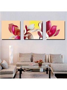 New Arrival Delicate Petals Canvas Wall Prints