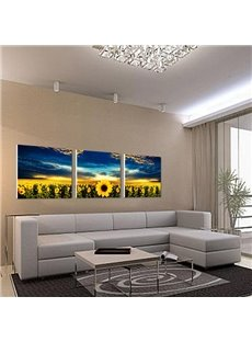 Elegant Sunflowers and Blue Sky Canvas 3-piece Framed Wall Art Prints