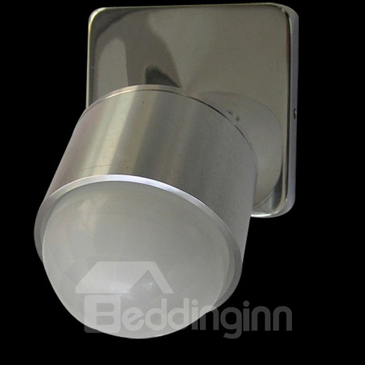 Amazing Comtemporary Electroplated Finish Metal LED Wall Light