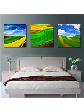 New Arrival Cornfield and Blue Sky Wall Prints