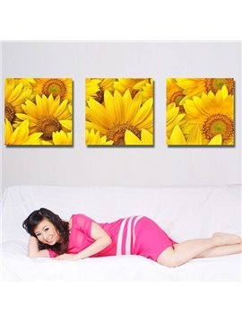 New Arrival Blooming Yellow Sunflowers Toward Sunshine Canvas Wall Prints