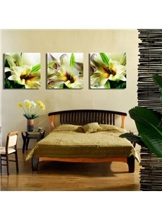 Fancy and Elegant Lily Blossom Pattern Framed Canvas Wall Art Prints