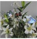 Fancy Creative 10-Pieces LED Butterfly Sticky Night-light