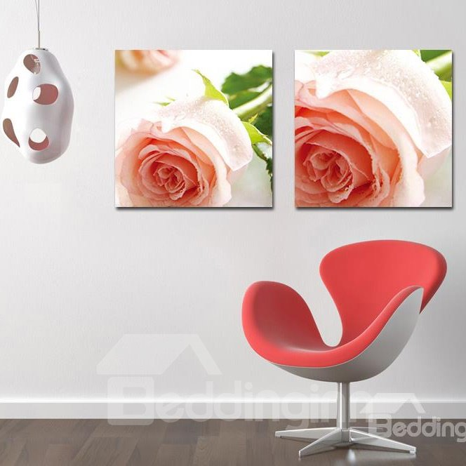 Pretty Romantic Pink Roses Film Art Wall Prints