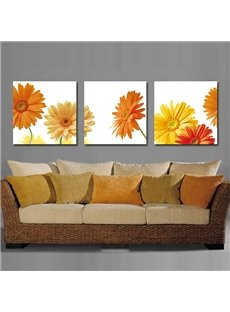 Flattering Daisy Toward Sunshine Film Art Wall Prints