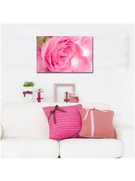Pretty Cute Flowers Film Art Wall Prints