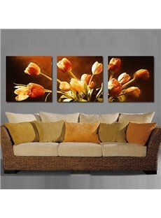 Splendid Beautiful Flowers Pattern 3 Pieces None Framed Wall Art Prints