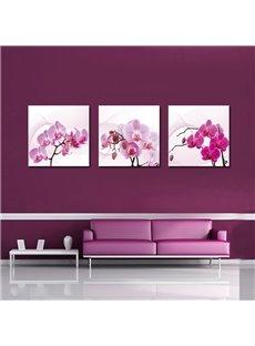 Flattering Pretty Orchid Film Art Wall Prints
