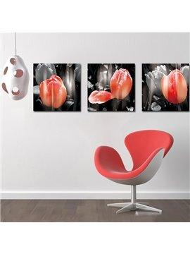 Adorable Delicate Tulip Film Art Wall Prints