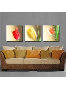 Colorful Elegant Tulips Film Art Wall Prints