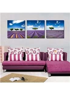 Beautiful Natural Scenery 3-Pieces of Crystal Film Art Wall Print
