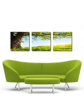 Fantastic Life Tree 3-Pieces of Crystal Film Art Wall Print