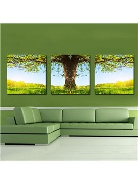 Amazing Tree 3-Pieces of Crystal Film Art Wall Print