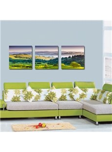 Wonderful Pretty Hillside 3-Pieces of Crystal Film Art Wall Print