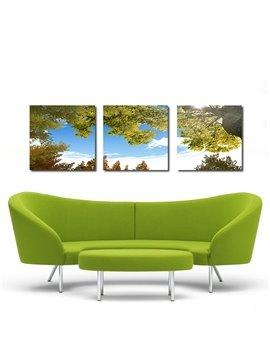 Beautiful Sky 3-Pieces of Crystal Film Art Wall Print