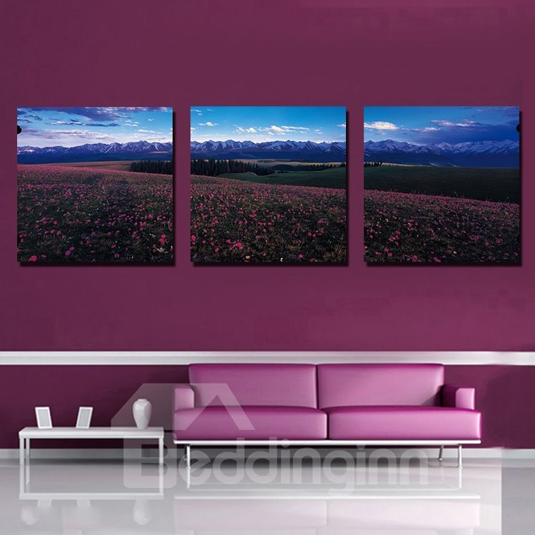 New Arrival Beautiful 3-Pieces of Crystal Film Art Wall Print