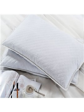 New Style Buckwheat Shell Filling Pure White A Pair Bed Pillow
