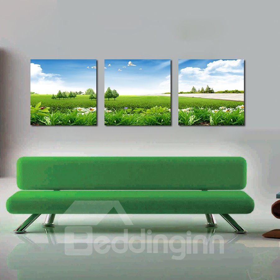 Beautiful Grass and Sky 3-Pieces of Crystal Film Art Wall Print