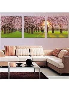 Pretty Sunshine and Sakura 3-Pieces of Crystal Film Art Wall Print