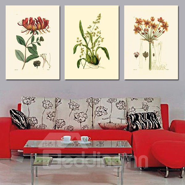 Classic Plant Flowers 3-Piece Crystal Film Art Wall Print
