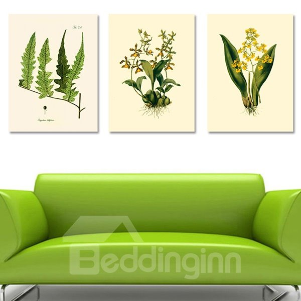 Wonderful Countryside Plant 3-Piece Crystal Film Art Wall Print