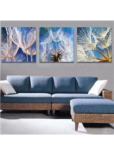 Fantastic Dandelion 3-Piece Crystal Film Art Wall Print