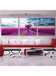 Beauty Scenery 3-Piece Crystal Film Art Wall Print