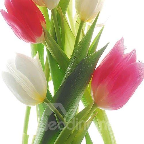 Wonderful Pretty Tulips 3-Piece Crystal Film Art Wall Prints