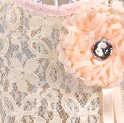 Amazing Pretty Sweet Lace Pink Dress Dog Clothing