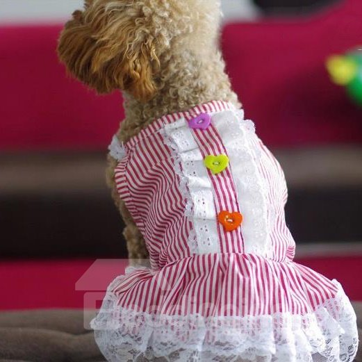Top Quality Pink Striped Skirt for Dog