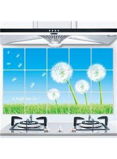 Fantastic Dandelion  Aluminum Foil Oil Proof Kitchen Hearth Removable Wall Stickers