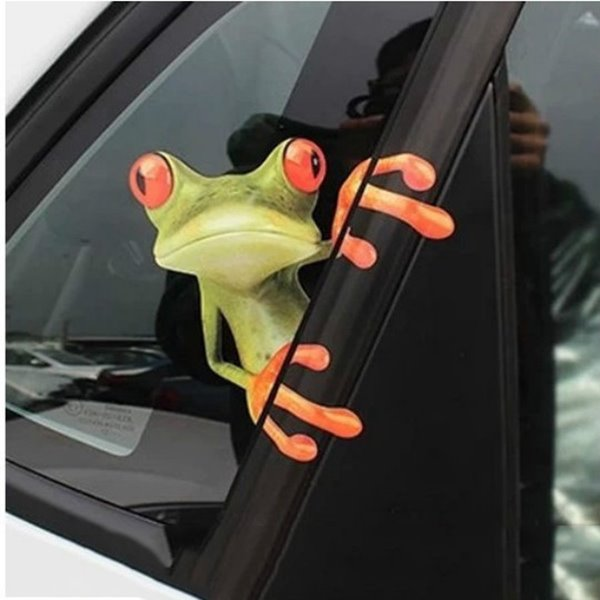 53 funny 3d watching outside frog car sticker