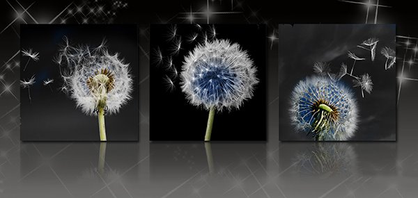 Dandelion 3-Piece Crystal Film Art Wall Print