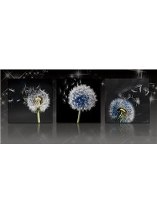 Dandelion 3-Piece Crystal Film Art Wall Print